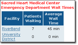 Emergency Room Wait Times Strategy
